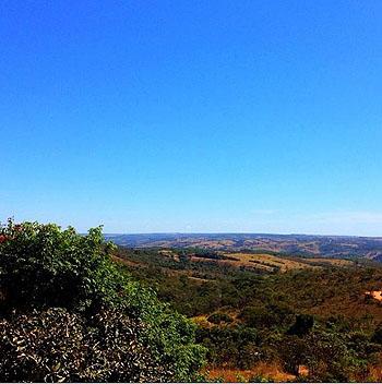 Afoto que causou indignação: paisagem de Cerrado que  o jornalista Luiz Bacci creditou como sendo uma imagem de Goiânia | Fotos: Divulgação/Twitter
