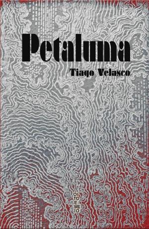 """Os contos de """"Petaluma"""" guardam o compromisso de defender uma proposta e se saem tão bem quanto o autor, seguro na construção e na condução de sua prosa Foto: Reprodução"""