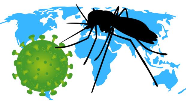 Pavor com coronavírus cresce, mas o perigo maior está em nosso ...