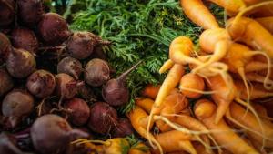 Relator de projeto diz que não há proibição à venda de orgânicos em supermercados