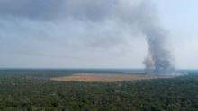 Ministério do Meio Ambiente demite autoridades de combate à mudança climática
