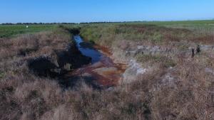 Goiás sofre com desastre ambiental