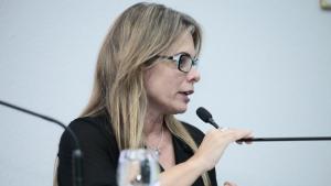 Secretária da Economia estuda novo modelo de conselho para analisar adesões a incentivos fiscais