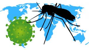 Pavor com coronavírus cresce, mas o perigo maior está em nosso quintal