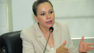 """""""Reforma política não é a salvação  para todos os níveis de corrupção"""""""