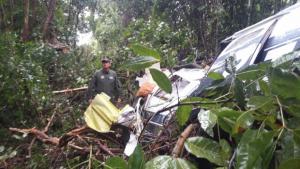 Avião cai em área rural de Trindade e deixa três mortos