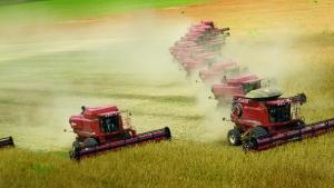 Investimentos em infraestrutura impulsionam agronegócio goiano