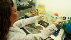 Brasileira na China conta rotina de país sob o coronavírus