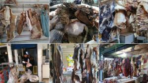 Operação do MP-GO apreende mais de 1 tonelada de carne estragada em Goiás