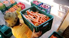 Setor agrícola testa padronizar feiras livres para tentar liberar funcionamento