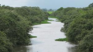Acidente com carreta bitrem causa danos ambientais às margens do Rio Capivari