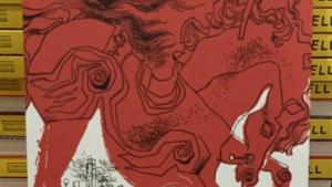 O Apanhador no Campo de Centeio: Salinger e o medo da velhice