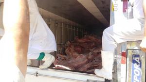 Homem rouba carga de carnes, sequestra motorista e acaba morto pela polícia em Goiás