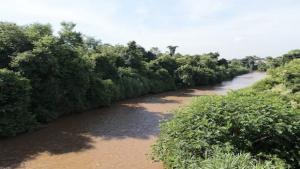 Chove 60% menos no primeiro bimestre e Goiás se prepara para a escassez de água