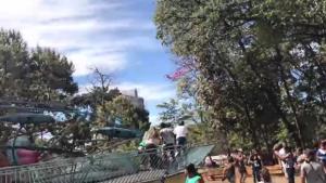 Vídeos mostram desespero após acidente que deixou 11 feridos no Mutirama