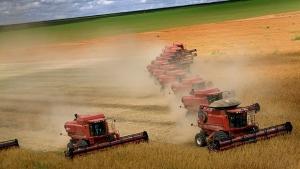 Rio Verde tem o segundo melhor resultado do País no setor agropecuário