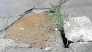 """Nasce um pé de milho num buraco de uma rua do """"nobre"""" Setor Marista"""