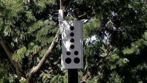 Vereadores cobram gestão Iris por melhor sinalização dos fotossensores em Goiânia