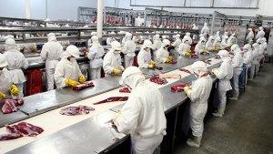 Produção industrial goiana cresce nos últimos 12 meses