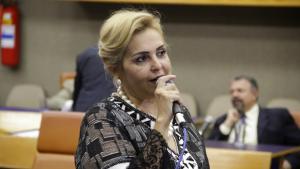 Vereadora Cida Garcêz lidera ranking de faltas em 2015