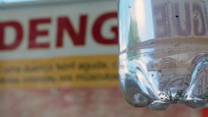 14 bairros de Goiânia têm alto índice de infestação do mosquito da dengue