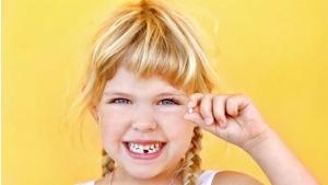 Empresa goiana promove palestra sobre células-tronco em dentes de leite