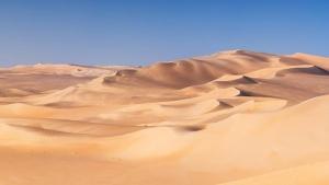 """Leituras de verão (1) Sob o sol do Nordeste,""""Os olhos do deserto"""""""