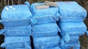 Polícia apreende 500 quilos de cocaína que abasteceria os estados de Goiás e Minas Gerais