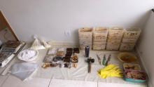 Polícia desmonta laboratório de cocaína no Setor Santa Fé