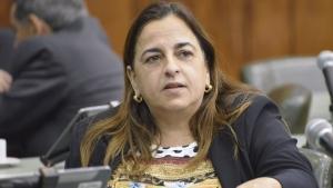 Eliane Pinheiro não vai disputar mandato de deputada federal
