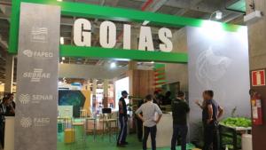 Stand do Governo de Goiás na Campus Party traz programação diversificada nesta sexta