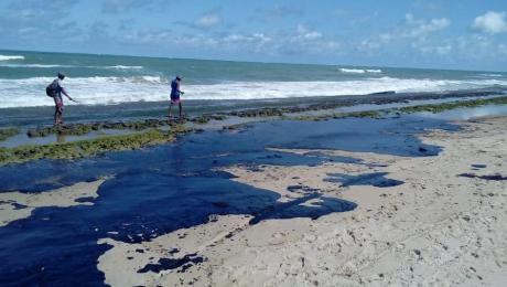 Agricultura disponibiliza auxílio emergencial para pescadores afetados por mancha de óleo