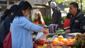 Câmara Federal discute propostas polêmicas sobre orgânicos e agrotóxicos