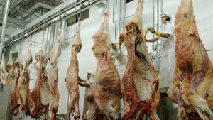 Operação apreende toneladas de carne clandestina em Goiânia