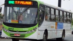 Procuradora do MPT propõe manutenção de reajuste salarial em 7% para motoristas