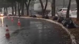 Motociclista morre após acidente causado por jamelões caídos no asfalto