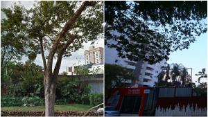 Como a falta de planejamento faz uma cidade enxotar seus próprios moradores