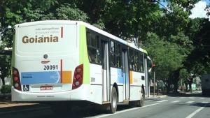 Idosa atropelada por ônibus respira com ajuda de aparelho