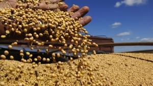 Safra agrícola goiana deverá ser a maior da história com 22,4 milhões de toneladas