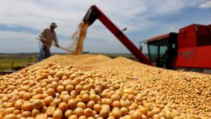 Vendas de soja e milho alavancam superávit da balança comercial de Goiás em outubro