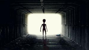 E se um alienígena descobrisse o Brasil?
